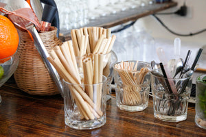 Natural Bamboo Straw Pack 100 - bamboo straws