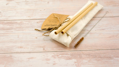 Reusable Straw - Bamboo Straw | Pack 2 ( With Natural Coconut Brush) - bamboo straws