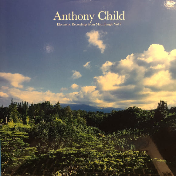 ANTHONY CHILD - ELECTRONIC RECORDINGS FROM MAUI JUNGLE, VOL. 2 2LP (EDITIONS MEGO)