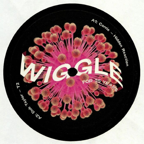 VARIOUS - WIGGLE FOR 25 YEARS SAMPLER 12