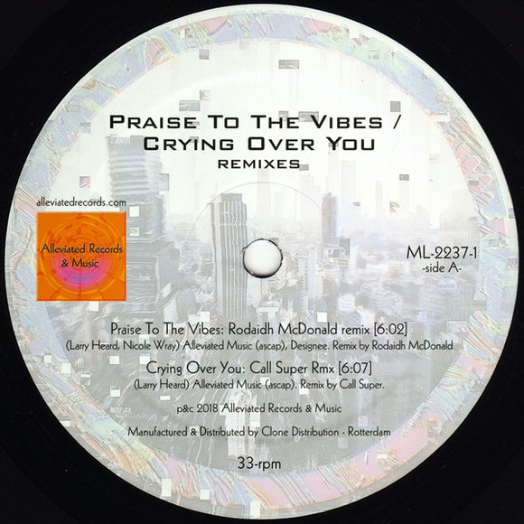 MR FINGERS - PRAISE / CRYING RMXS 12