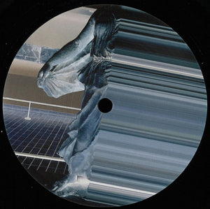 "JOSHUA JAMES - COARSE 12"" (PHANTASY)"