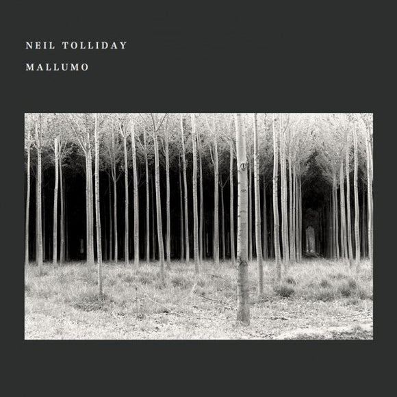 NEIL TOLLIDAY - MALLUMO DLP (UTOPIA RECORDS)