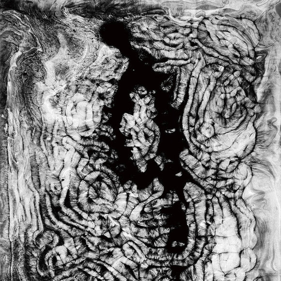 FORESTS - IDOL COLLAPSE 2LP (LEFT HAND PATH)