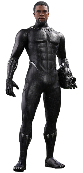 Black Panther Movie: Black Panther 1/6th Scale Figure by Hot Toys