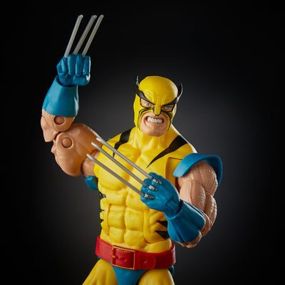 Hulk vs Wolverine 80th Anniversary Exclusive Marvel Legends Figures by Hasbro