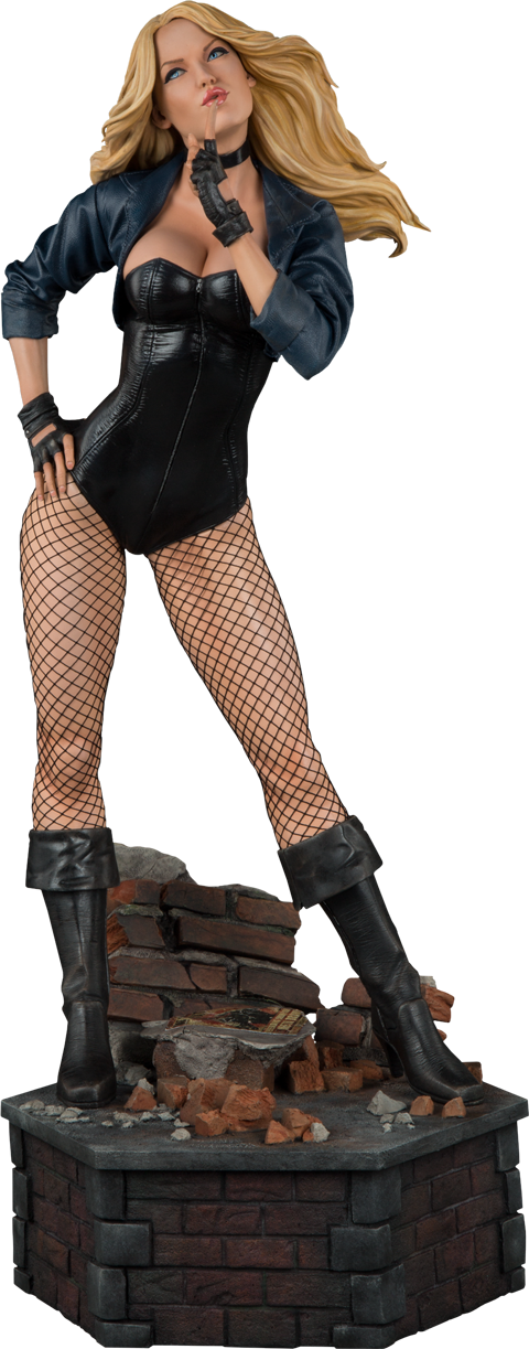 Black Canary 1/4th Scale Premium Format Figure by Sideshow Collectibles-Sideshow Collectibles- www.superherotoystore.com-Statue - 1