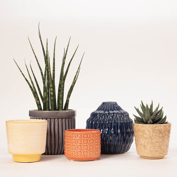 Group shot of colourful Bloomingville Ceramic Stoneware plant pots and a vase