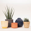 A colourful group of ceramic pots and vase designed by Bloomingville