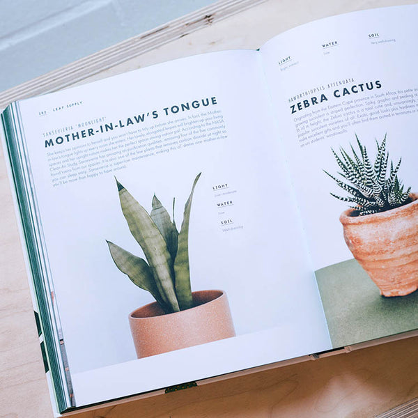 Inner pages of Leaf Supply: A Guide to Keeping Happy House Plants