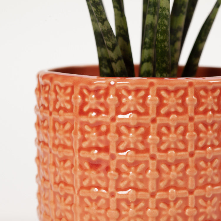 Detail shot of Bloomingville Small Orange Textured Stoneware Flowerpot