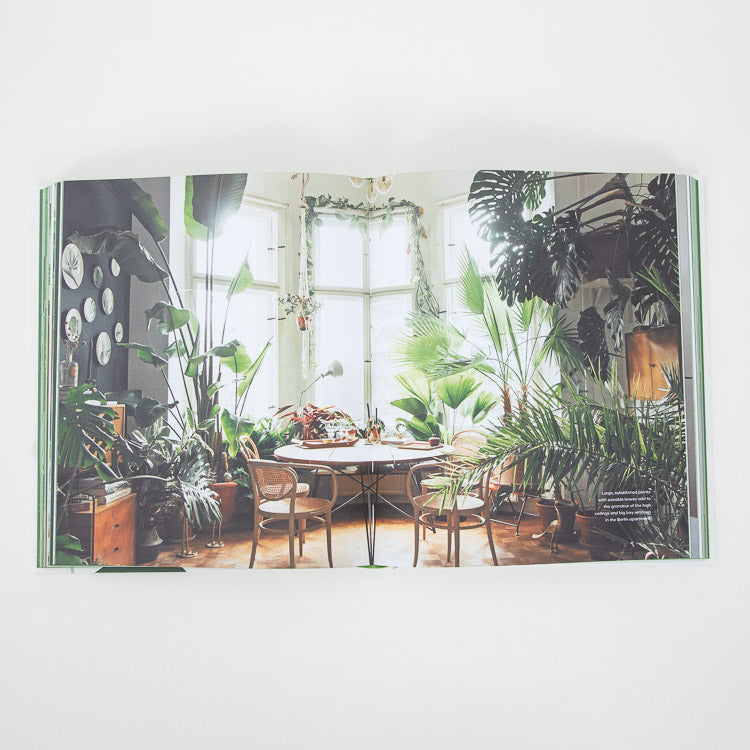 The Leaf Supply Guide To Creating Your Indoor Jungle - spread image