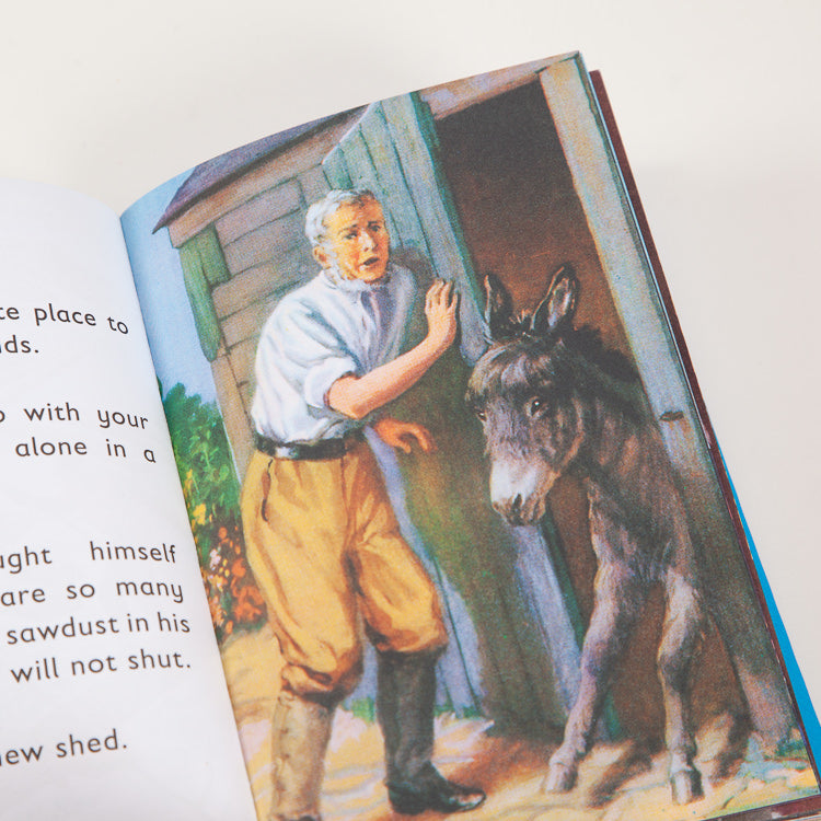Product shot: Ladybird Book Of The Shed, inner spread detail