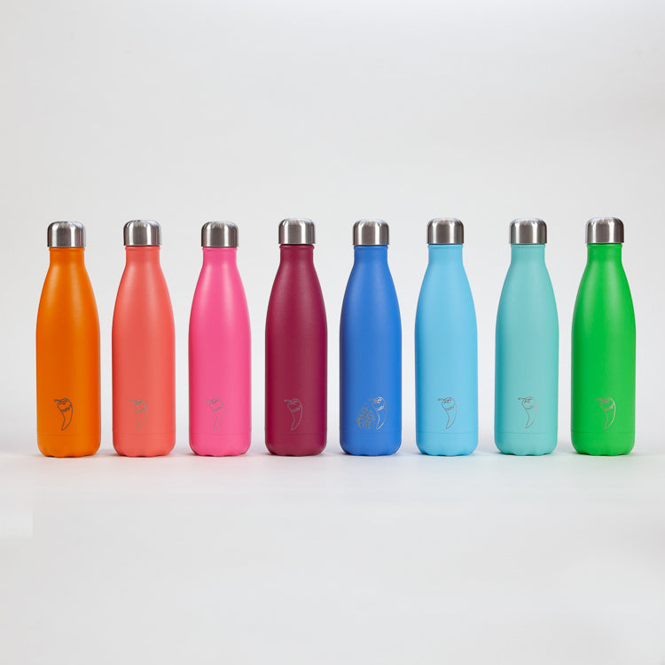 A colourful group of CHILLY'S 500ml Bottles