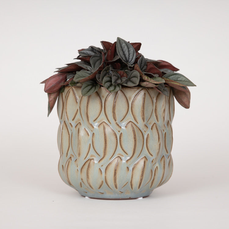 Bloomingville Natural Sand Stoneware Flowerpot - with plant