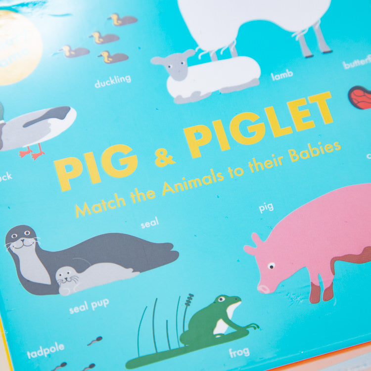 Pig & Piglet Memory Game - close up cover