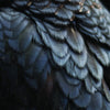 EX PEOPLE 'Bird' PRE-ORDER