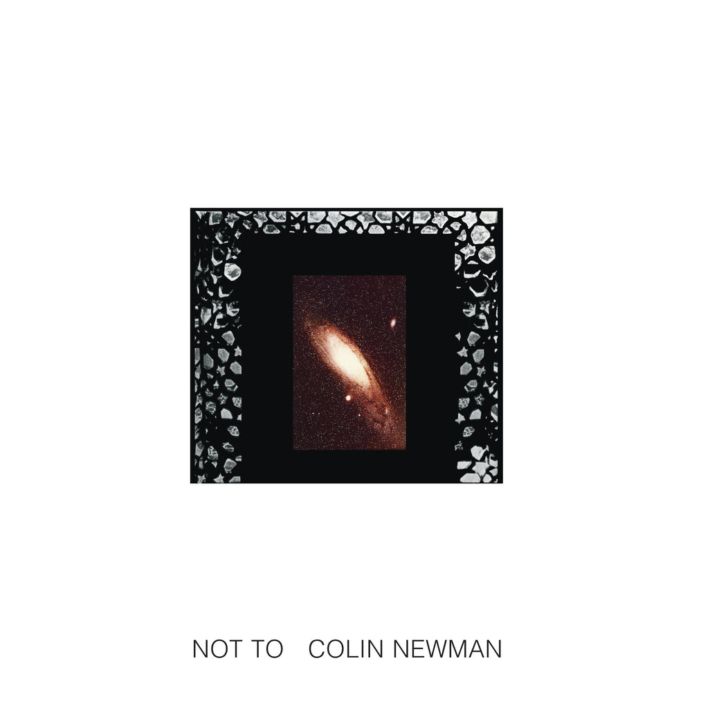 Colin Newman 'Not To' - Cargo Records UK