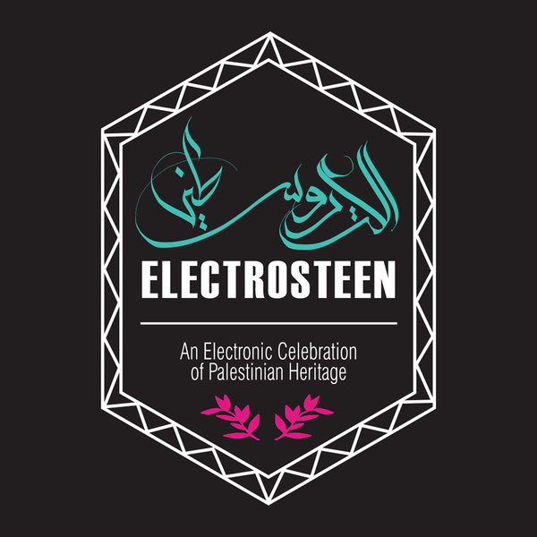 Various Artists 'Electrosteen' Vinyl LP