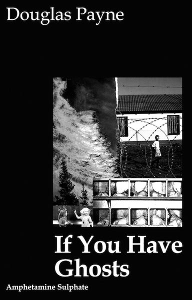 Douglas Payne 'If You Have Ghosts' Book