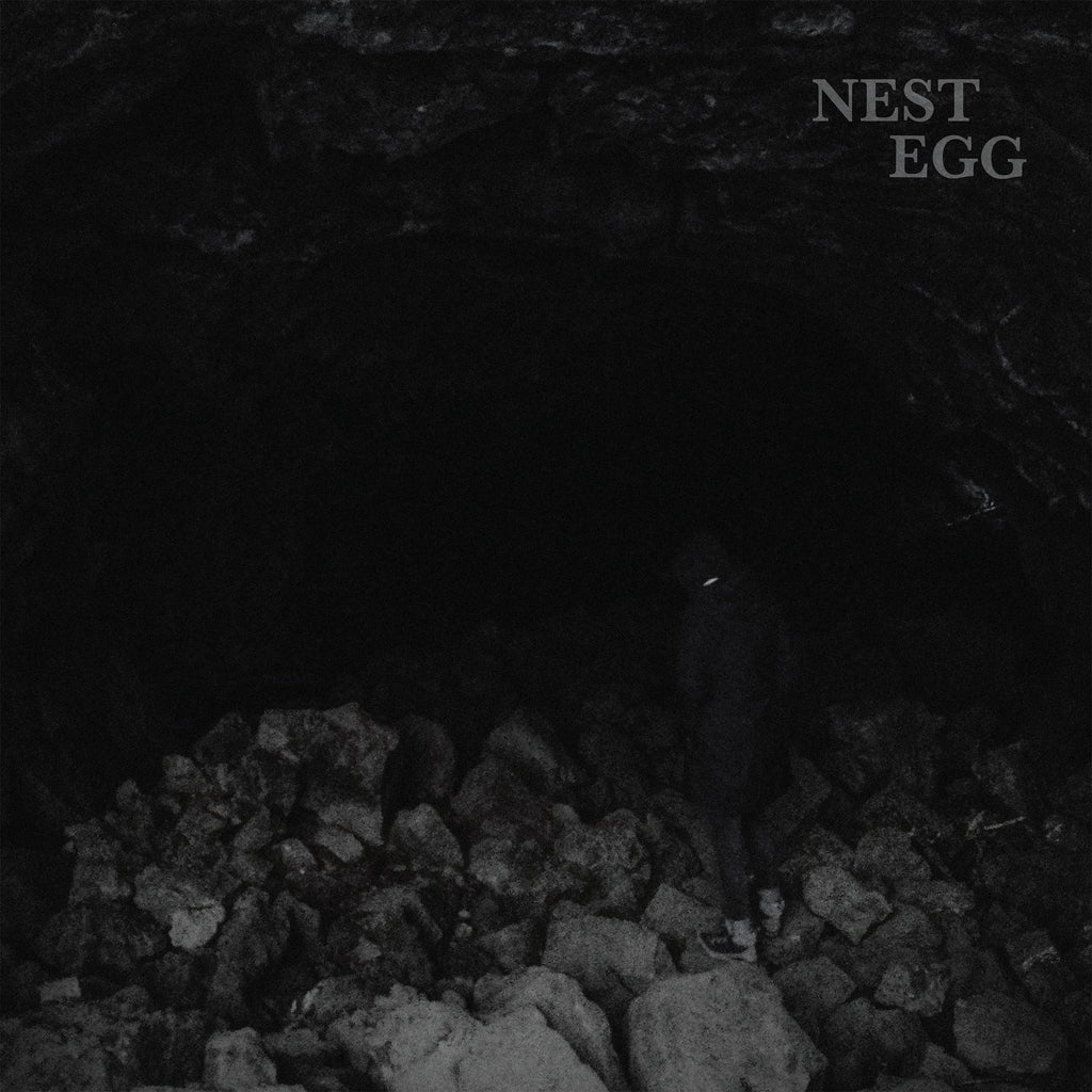 Nest Egg 'Nothingness Is Not A Curse' PRE-ORDER - Cargo Records UK