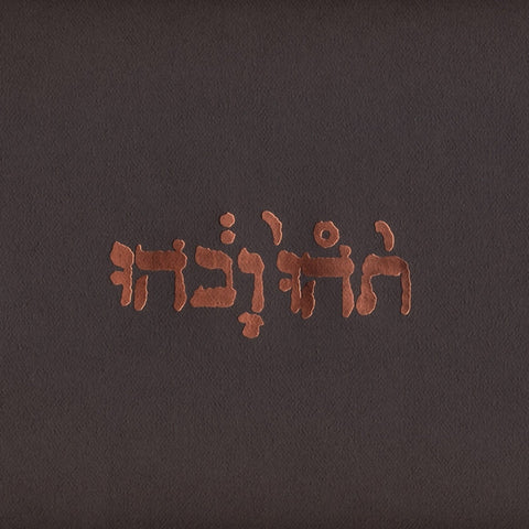 Godspeed You! Black Emperor 'Slow Riot For New Zero Kanada E.P.' - Cargo Records UK