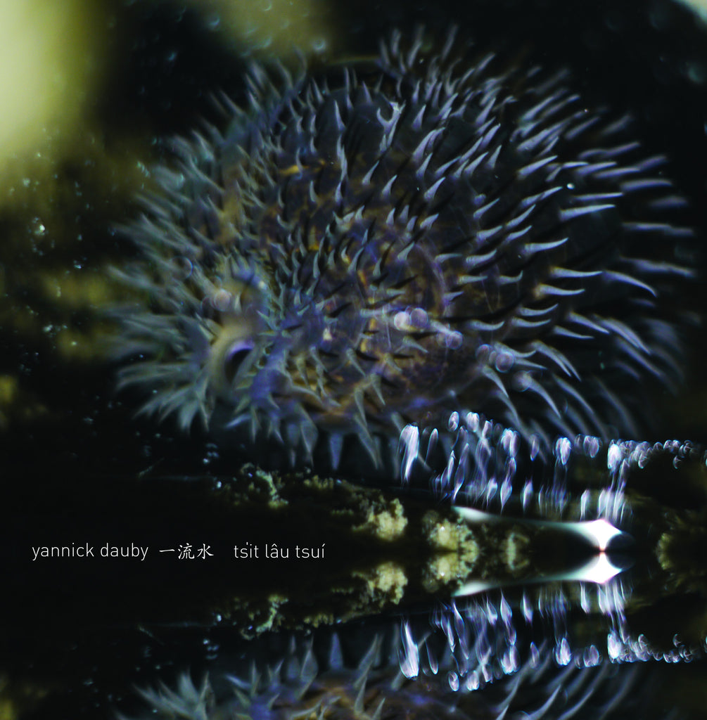 Yannick Dauby 'Penghu Experimental Sound Studio Vol. 1' - Cargo Records UK