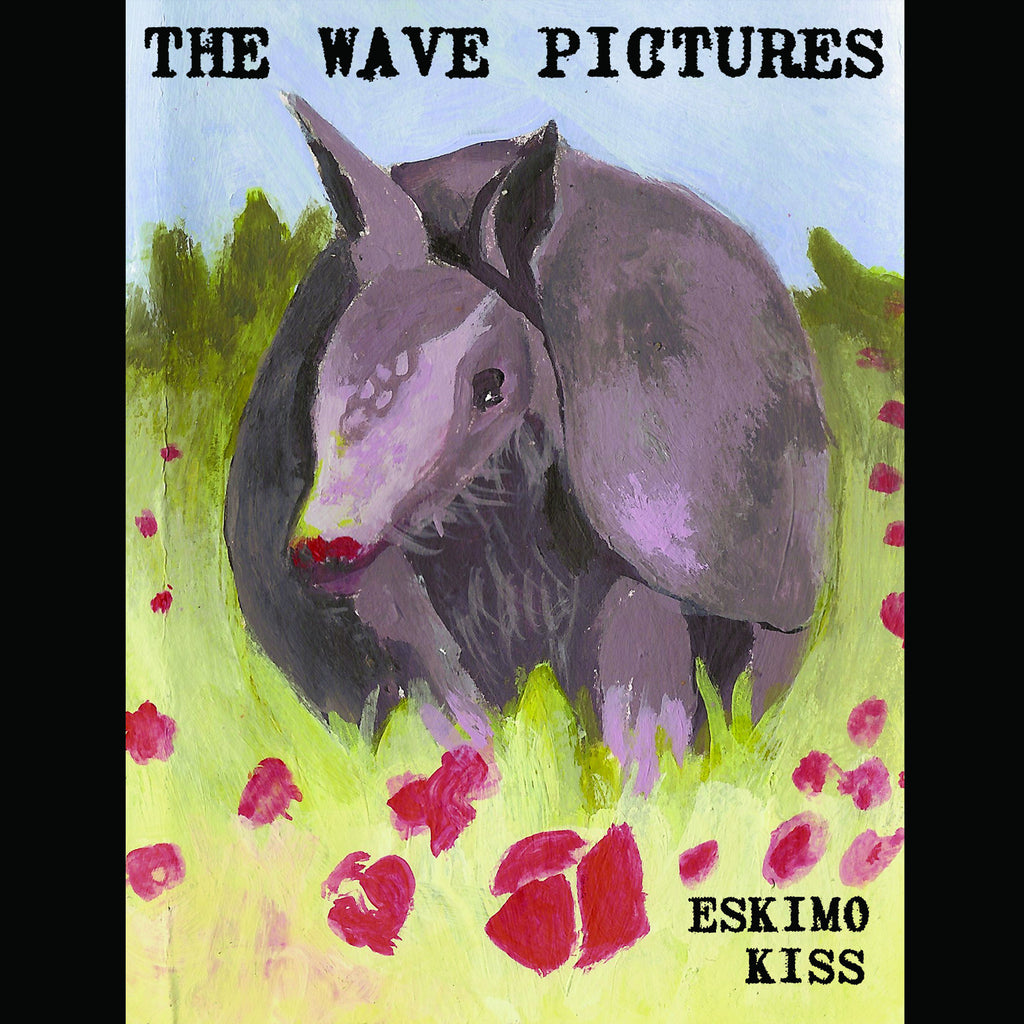The Wave Pictures 'Eskimokiss' - Cargo Records UK