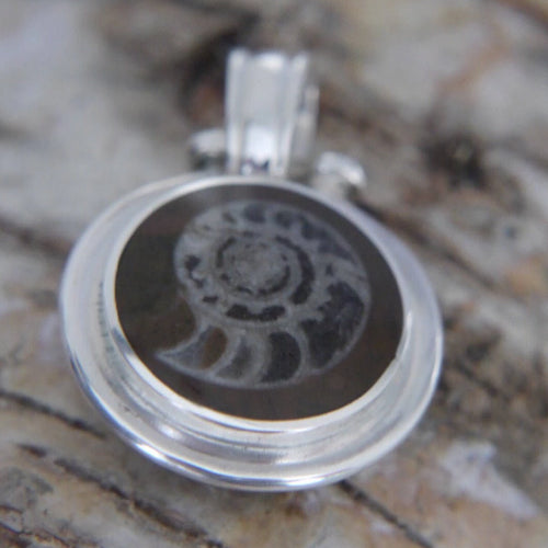 Ammonite Reversible Pendant with Whitby Jet