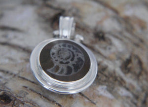 Ammonite & Jet Double Sided Pendant