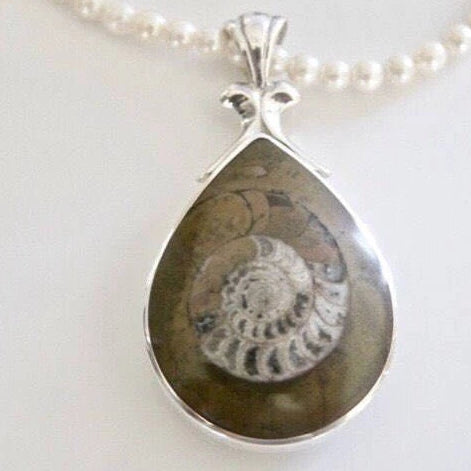 Ammonite Double Sided Pendant with Whitby Jet