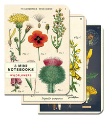 Notebook Sets