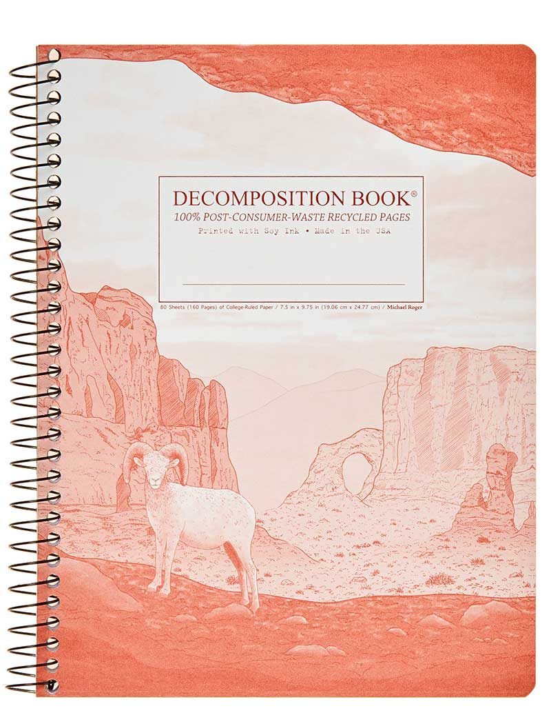 Decomposition Spiral Notebook - Moab