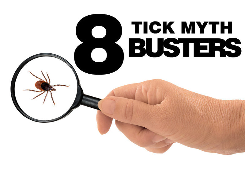 8 Tick Myth Busters