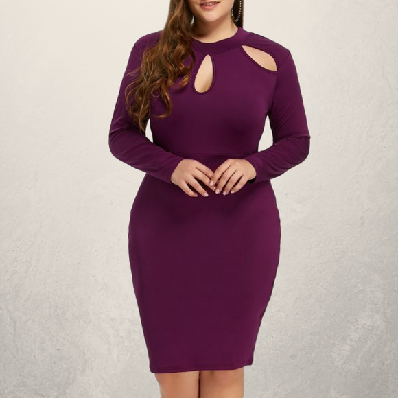 Cut Out Fitted Dress with Long Sleeves