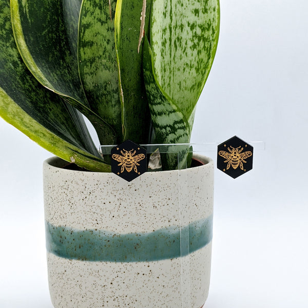 Gold Honey Bee Hexagon Matte Black Acrylic Stud Earrings