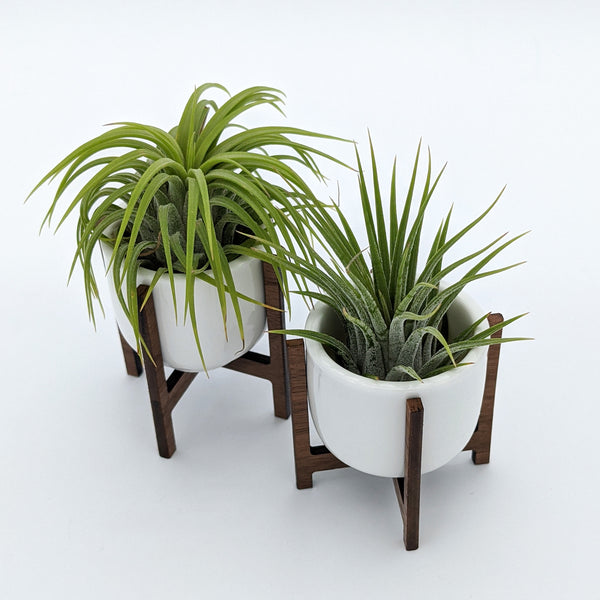Mid Century Modern Mini Air Plant Holders