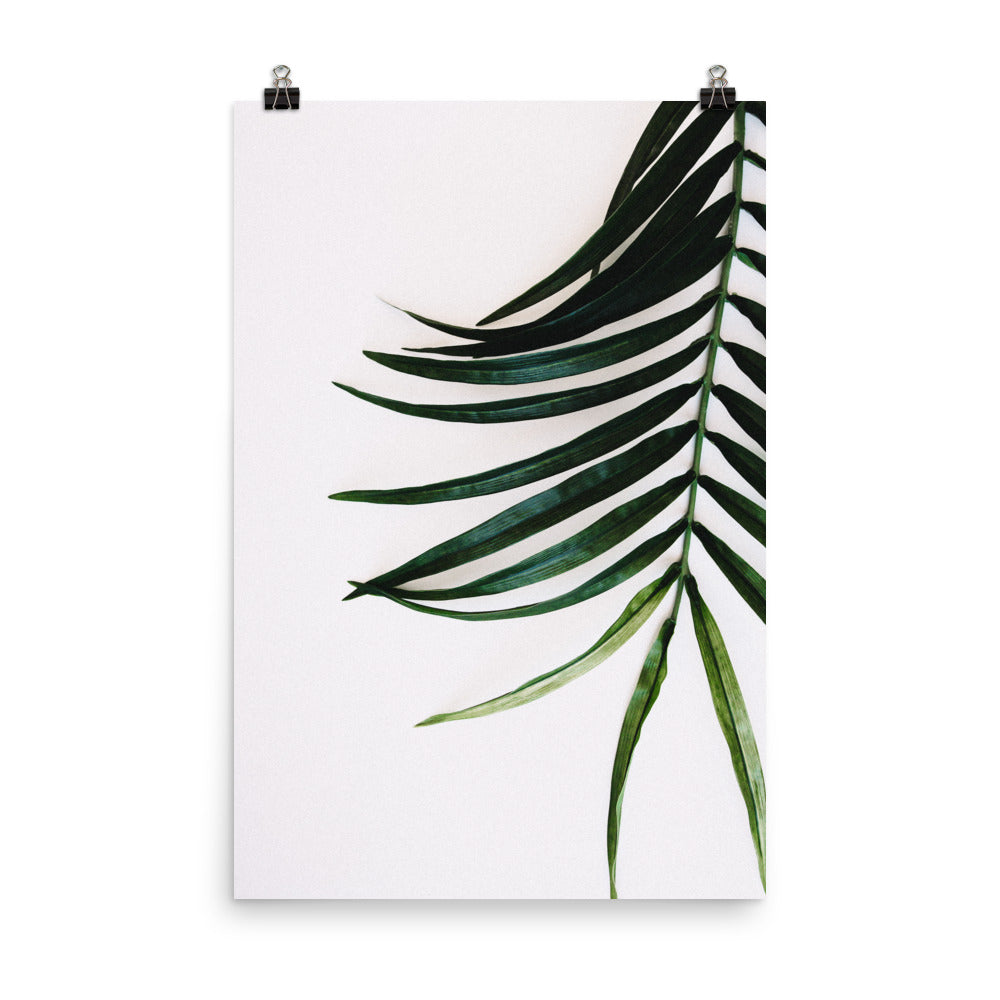 Palm Leaf Photo Art Print
