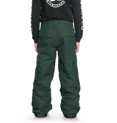 DC 2019 Youth Banshee Pant Pine Grove