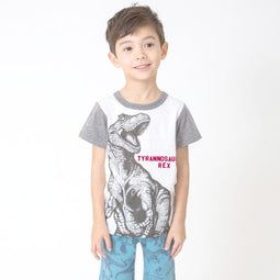 Dino Color Combination Sleeves Tee  - OFF WHITE 18ss - Bit'z Kids