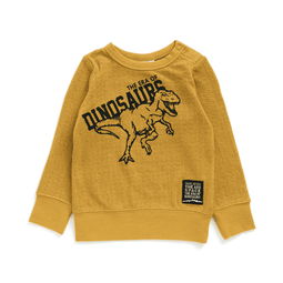 Era of Dinosaur Tee - Bit'z Kids