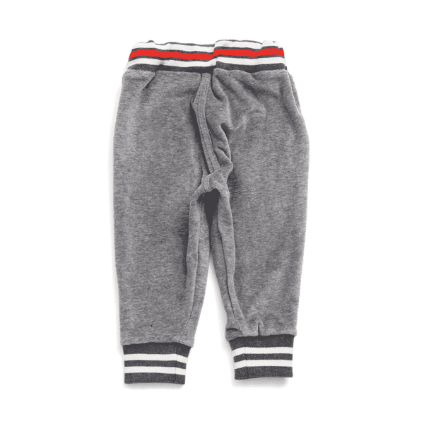 velour jogger pants grey