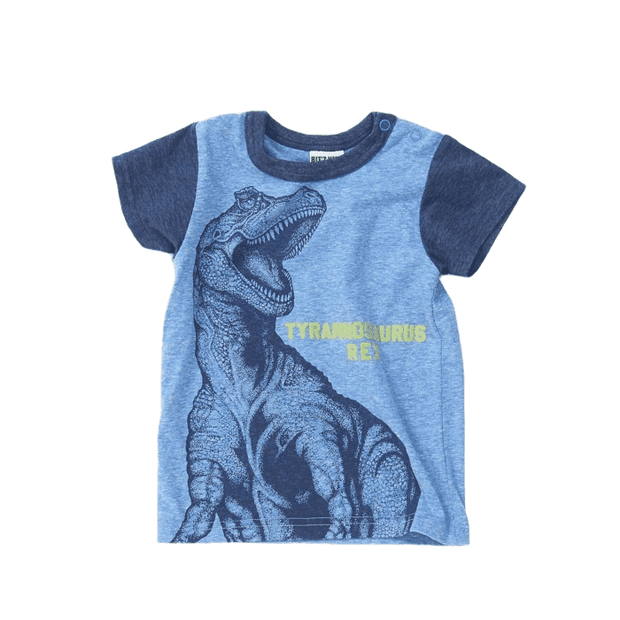 Dino Color Combination Sleeves Tee