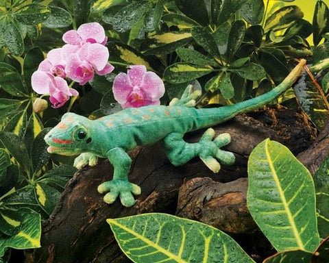 Gecko Hand Puppet from Folkmanis Puppets