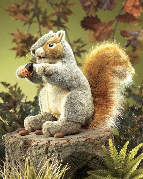 Gray Squirrel Hand Puppet from Folkmanis Puppets - AardvarksToZebras.com