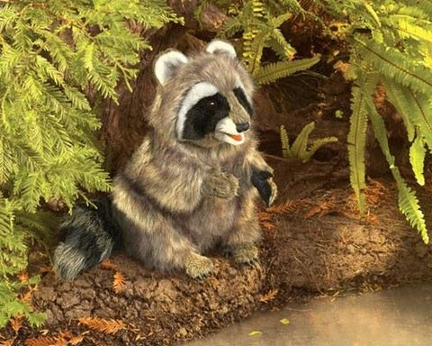 Raccoon Hand Puppet from Folkmanis Puppets