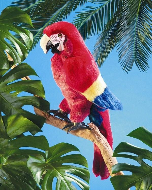 Scarlet Macaw Parrot Hand Puppet from Folkmanis Puppets - AardvarksToZebras.com