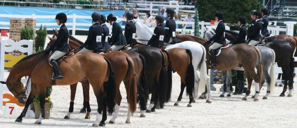 Support Your Horse During the Summer Show Season