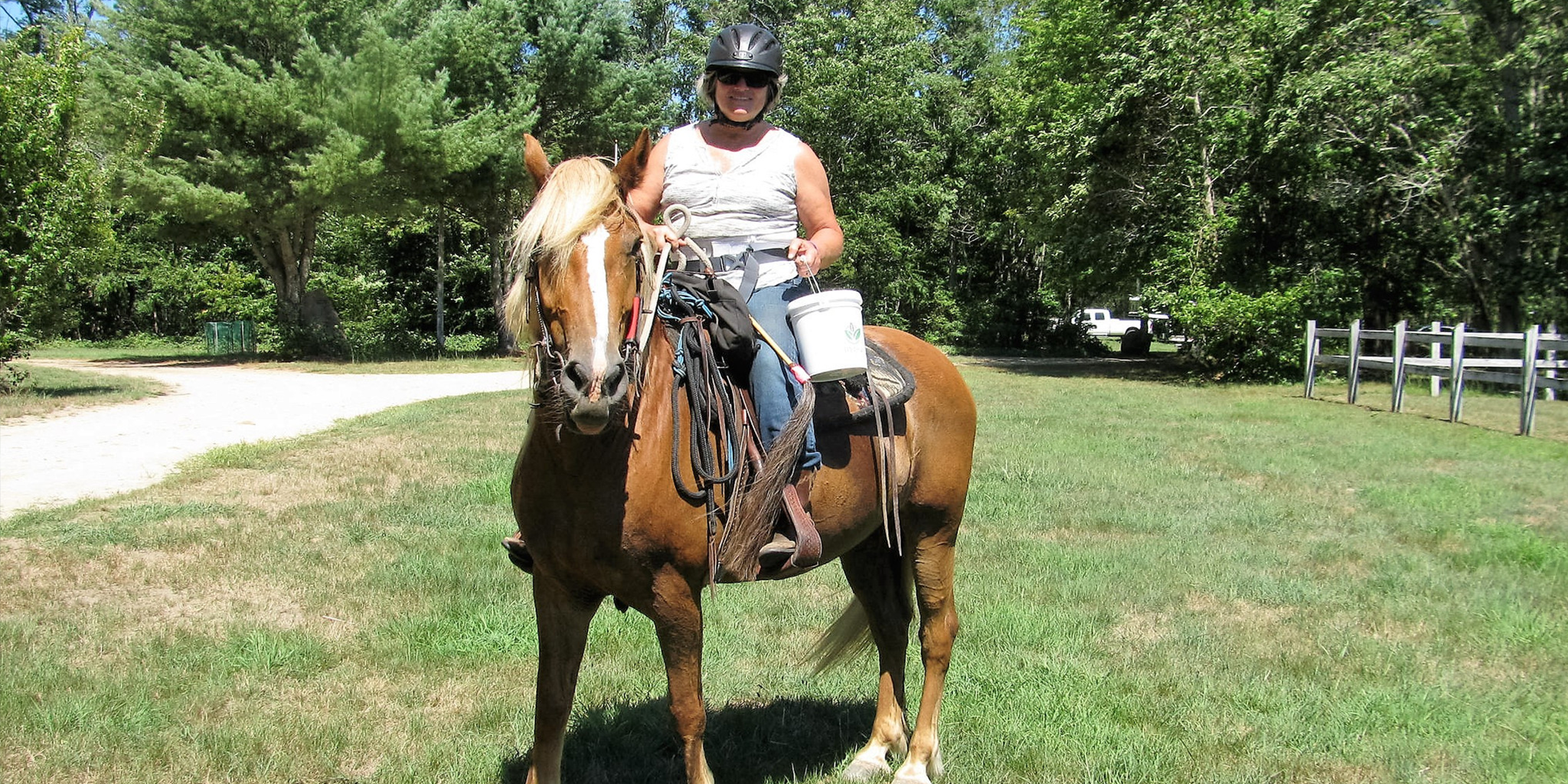 Rhode Island Federation of Riding Clubs Celebrates 50th Anniversary