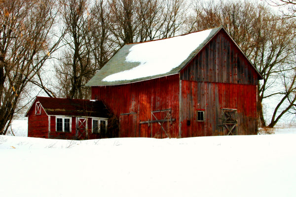 Tips for Winterizing Your Barn